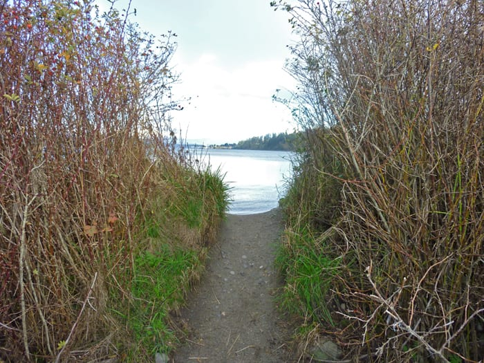 Trail to beach at Anacortes Ferry Landing