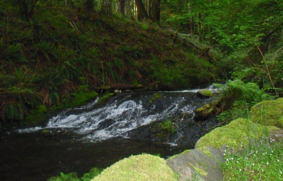 Lovely Cascade Creek