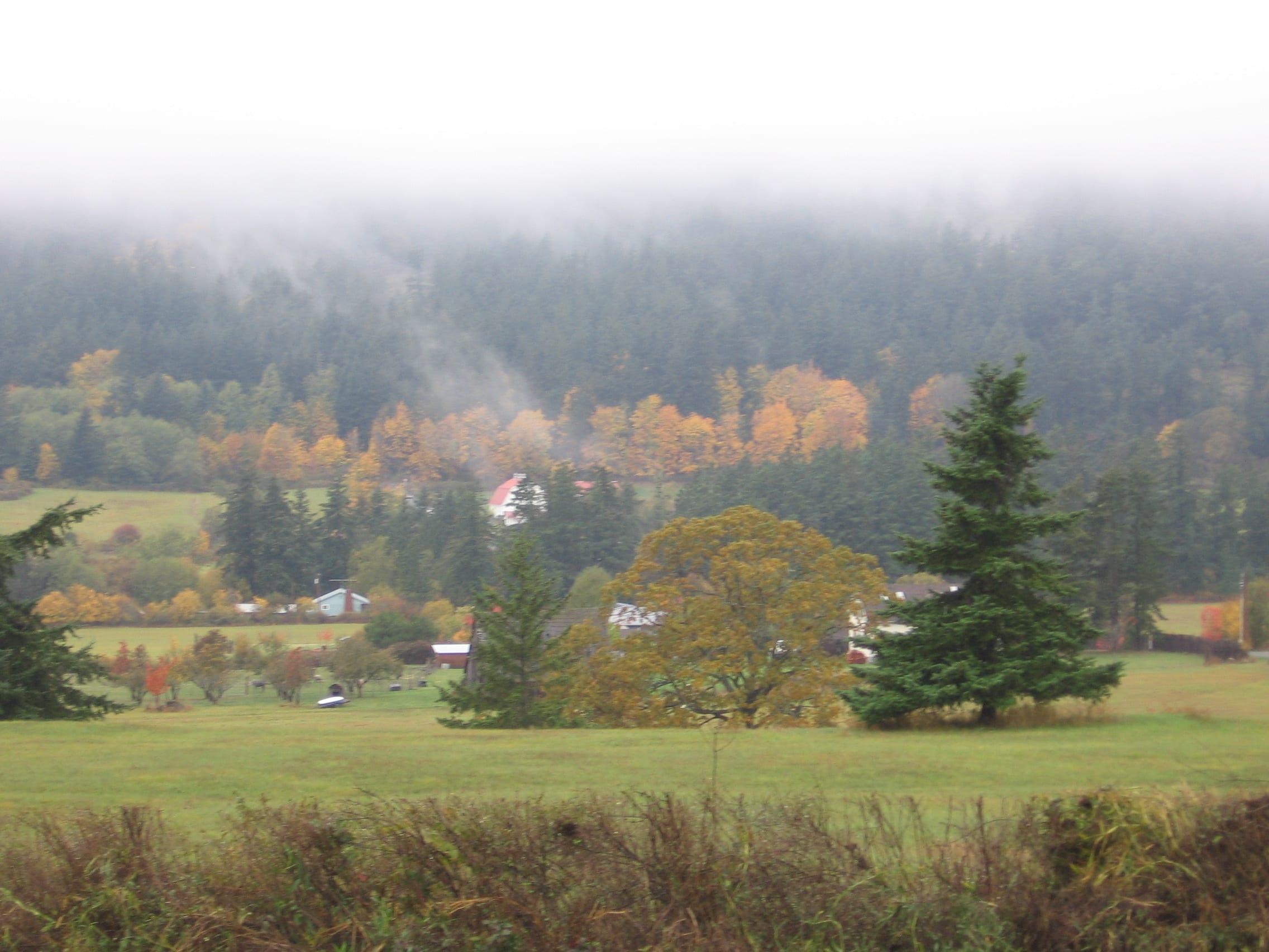 Fall 2009 015