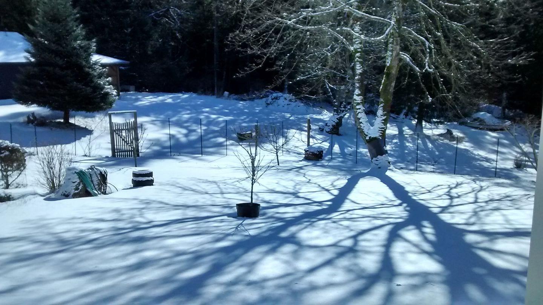olga-snow-shadows