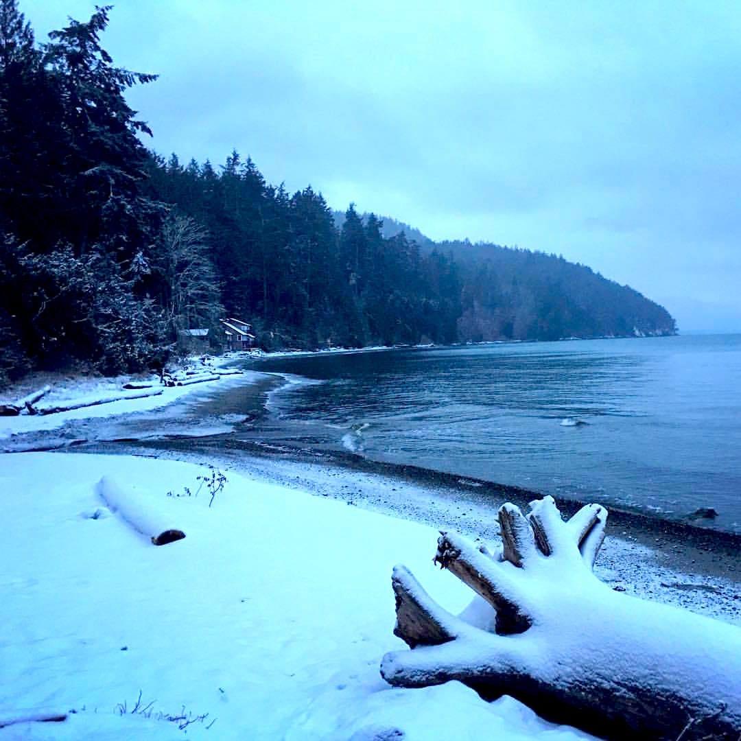 sea-level-snow-wb