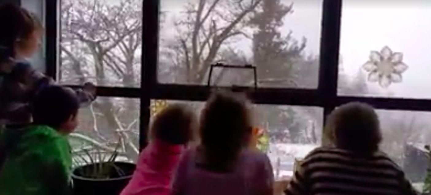 snow-at-school