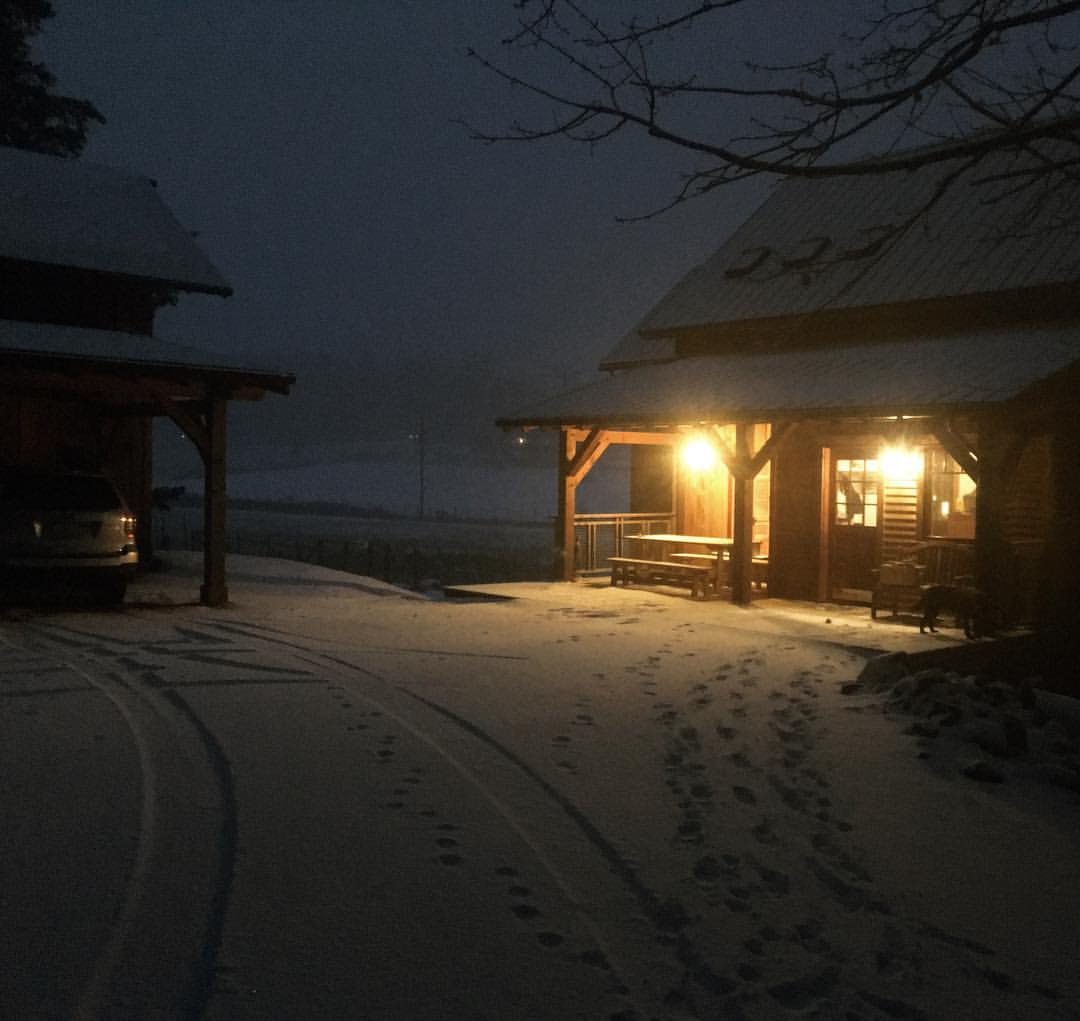 snowfall-at-night-in-the-valley